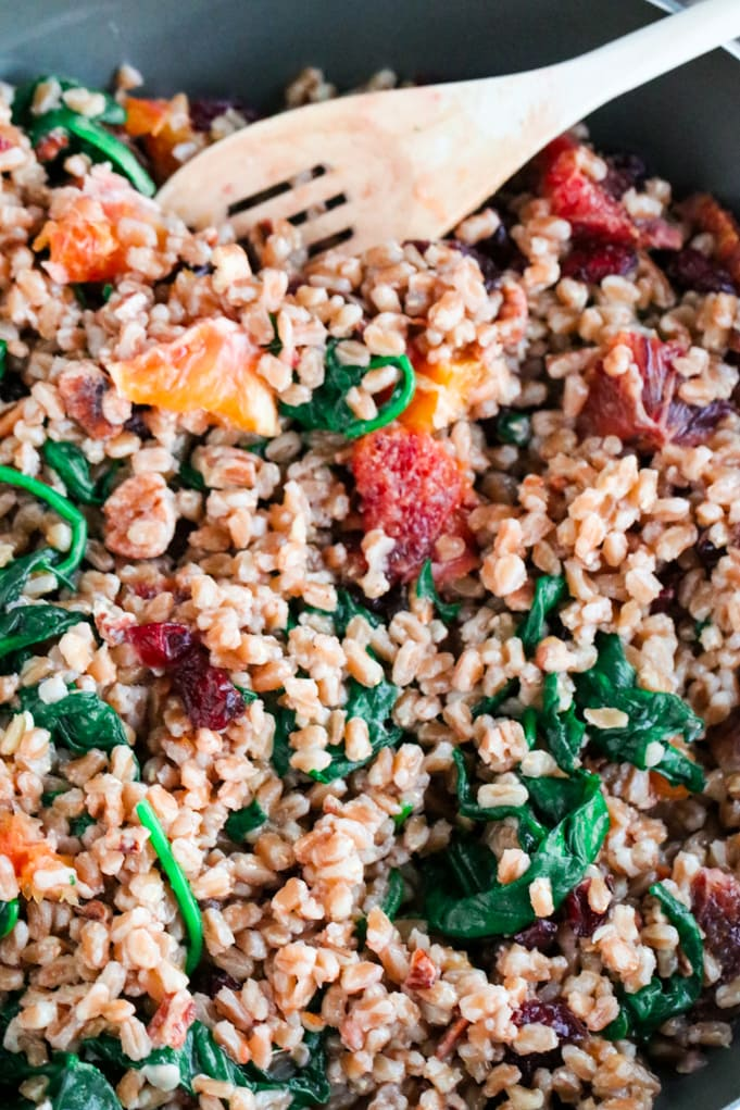 A closeup of Farro and Spinach
